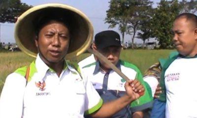 Ketua HKTI Jember Jumantoro (kiri) bersama jajarannya di sawah petani.(ist)