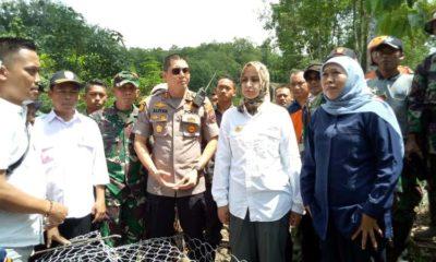Didampingi dr Hj Faida MMr dan Forkopimda Jember, Gubernur Jawa Timur Khofifah Indar Parawansa kunjungi tebing yang longsor dan jalan terputus di Kali Jompo Klungkung Jember. (gik)