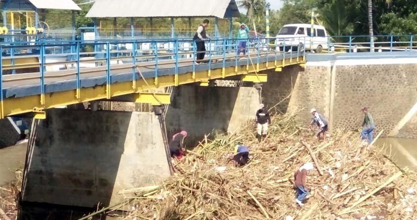 Petugas pengairan Kencong membersihkan sampah di DAM Pondokwaluh l. (bud)