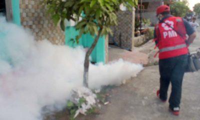 Petugas dari PMI sedang melakukan Fogging. (Tog)