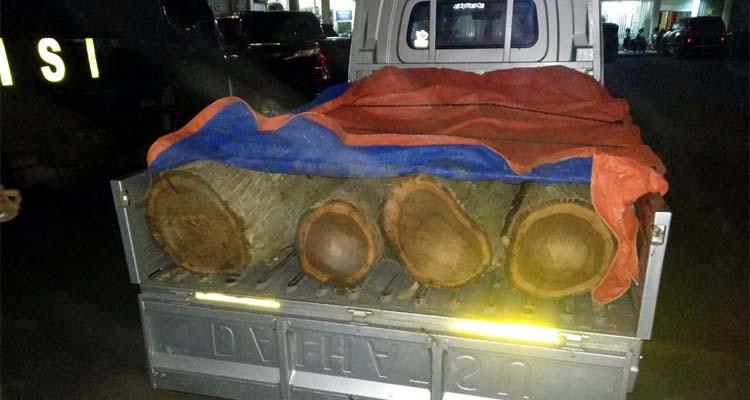 Mobil pikap dengan kayu jati hasil curian. (ist)